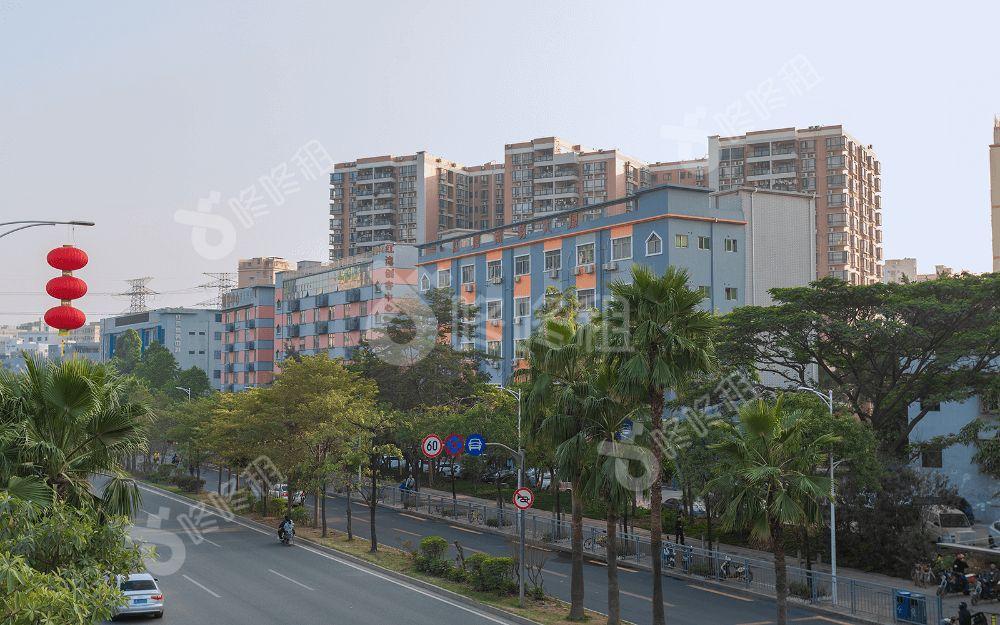 红湾商务中心